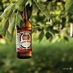 apple_beer_tree